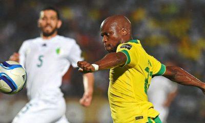 Algeria 3 : 1 South Africa +Videó Afrikai Nemzetek Kupája 2015 Január 19